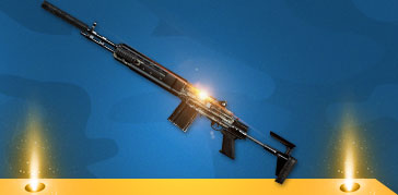 M14EBR-迷彩