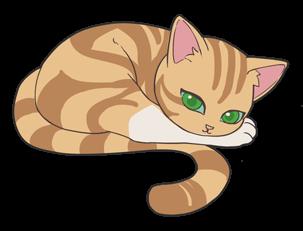 第二题拖动的猫咪