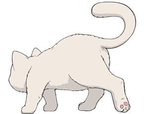 第三题拖动的猫咪